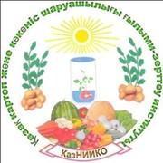 ҚазККШҒЗИ - КазНИИКО- KazRIPVG группа в Моем Мире.