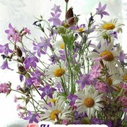 Татьяна Гуревич on My World.