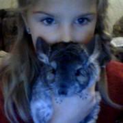 Котёнок КЭТ   ТФ on My World.