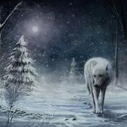 Одинокий Волк on My World.