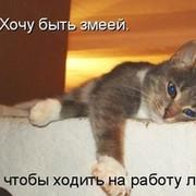 Елена Озерова on My World.